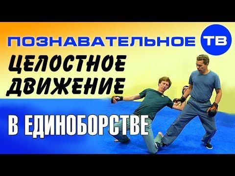 Боевое применение целостного движения (Познавательное ТВ, Евгений Беляков)