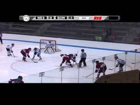 Women's Hockey vs. Williams NESCAC Quarterfinals (3/1/14)