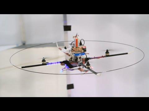 Fliegende Intelligenz