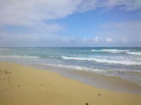 Terrenos Uvero Alto, Punta Cana,Joan Bienvenido Bruno Jorge