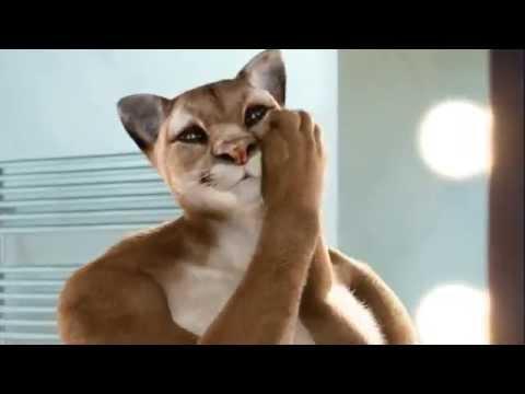 "FR#3 / Orangina Gay ""cat"" banned French ad"