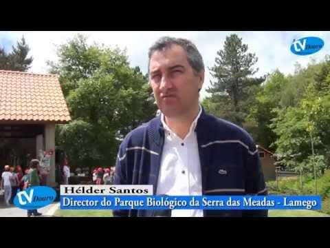 Parque Biológico de Lamego organizou Semana do Ambiente - Televisão do Douro