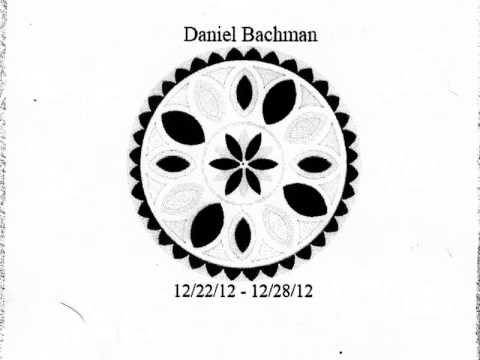 bachman - from the 12-22-12 - 12-28-12 Tour CDr January 2013.