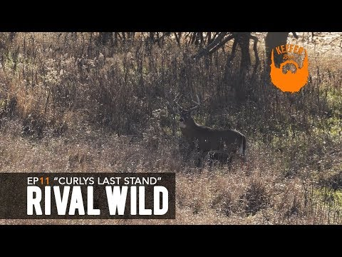 """Rival Wild - Episode 11 """"Curlys Last Stand"""" - HUMANIMAL"""