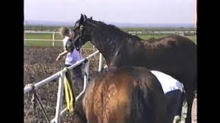 Eemdijk 1986 deel 2