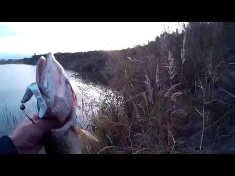 рыбалка на карьере в санкт-петербурге