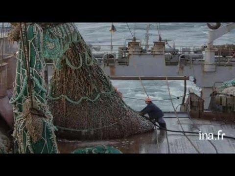 Mauritanie : filet de pêche sur le pont d'un chalutier
