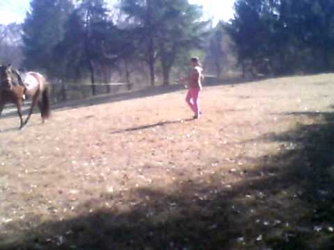 MY HORSE FLICKA IN TRAINING AN MY LIFE RIDING  me an flicka in training she is doin so good