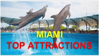 Visit Miami - Top 10 Things which can be done in Miami. What you can visit in Miami - Most visited touristic attractions of Miami Visit our Channel for Top ...