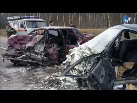 В ДТП в Шимском районе погибло 2 человека
