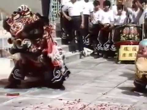 Forever Young Catherine Oh & The Best Lion Dance Show in Chinese New Year