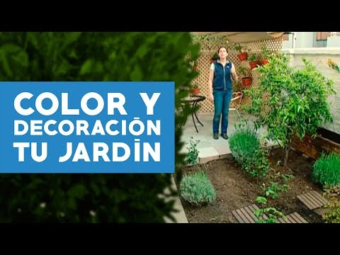 C mo agregar color y decorar el jard n for Como decorar mi patio con piedras