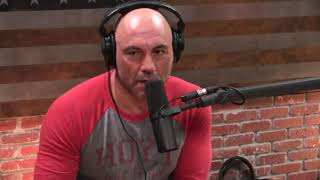 Video Joe Rogan on the Violence in Chicago MP3, 3GP, MP4, WEBM, AVI, FLV Oktober 2018