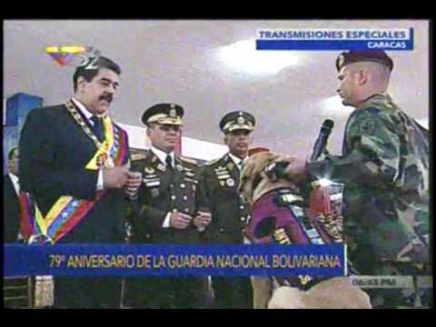 Ascienden y condecoran a perros antidrogas de la Guardia Nacional Bolivariana
