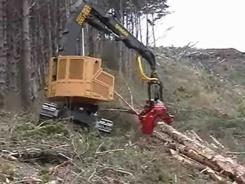 Tigercat Processing at The Stump - Pine Final Felling
