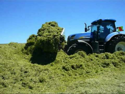 T7060 - T7060 buckraking in new zealand with irish driver!!