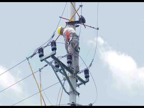 Ngành Điện miền Bắc chú trọng đảm bảo công tác an toàn hành lang lưới điện trong dân