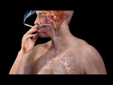[Cai Thuốc Lá #18] Nhờ điều này rất nhiều người đã bỏ được thuốc lá