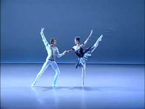 Shoko Nakamura and  Wieslaw Dudek / Black Swan