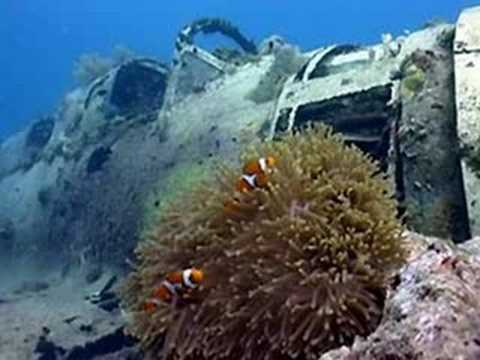 The Forgotten: Underwater wrecks of WWII