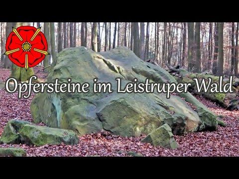 Leistruper Wald mit den Opfersteinen bei Detmold - www.lipperland.de thumbnail