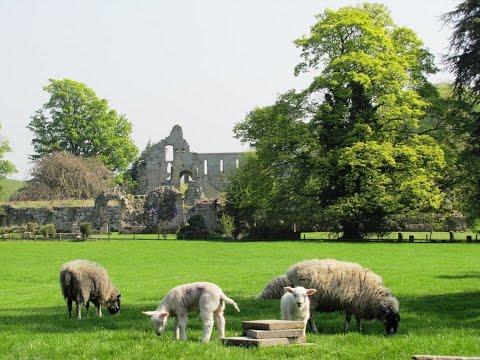 Cover Bridge – Jervaulx Abbey – Thornton Steward round | yorkshire dales  Walks