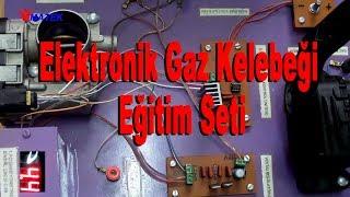 Elektronik Gaz Kelebeği Eğitim Seti - Electronic Throttle Control Training Kit (ETC)