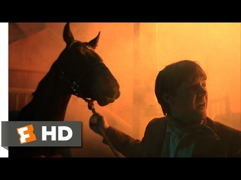 Black Beauty (1994) - Stable Fire Scene (4/10) | Movieclips
