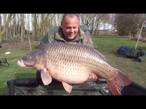 53lb Common Caught at Lillypool, Feb 2017