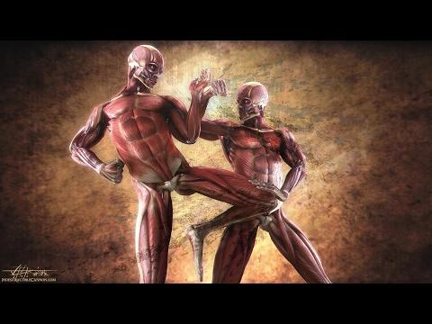 Top 10 MARTIAL ARTS Fighting Styles! ☯ | Most Effective Dangerous Killing Techniques! - J Vargas TV
