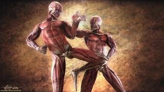 Video Top 10 MARTIAL ARTS Fighting Styles! ☯ | Most Effective Dangerous Killing Techniques! - J Vargas TV MP3, 3GP, MP4, WEBM, AVI, FLV Oktober 2017