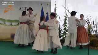 Zamejski Slovenci na otvoritvi sejma AGRA 2016