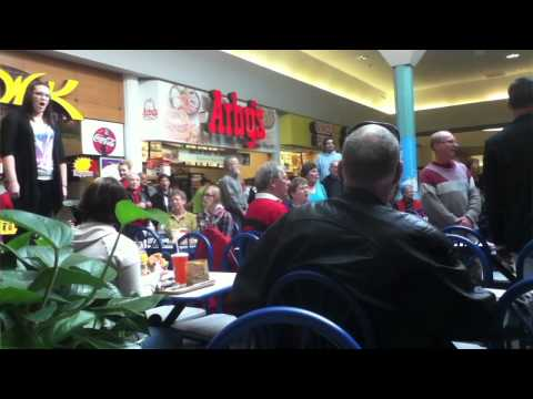 flash mob - http://www.AlphabetPhotography.com - On Nov.13 2010 unsuspecting shoppers got a big surprise while enjoying their lunch. Over 100 participants in this awesom...