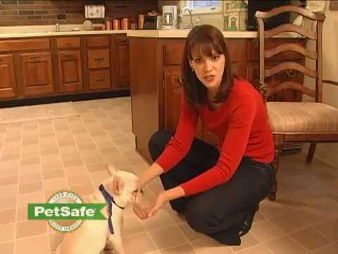 Petsafe Spray Kleine hond