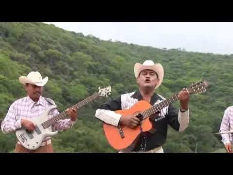 8.Pajarillo Barraquillero-Bertin y Lalo