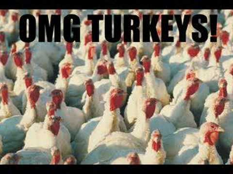 Turkey video song download