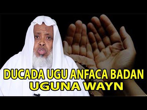 DUCADA UGU ANFACA BADAN UGUNA WAYN  || Sh.maxamed kaariye