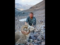Arctic Red River Outfitters Dall Sheep/ Caribou Hunt 2013