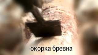 Окорка бревна при строительстве рубленного дома