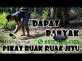 Download Lagu pikat ruak ruak dapat banyak (Pesan Racik/Jerat hub WA:085274304323) Mp3 Free