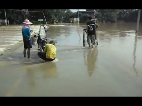 Người dân kéo ra đường bắt cá khi lũ về, vui hơn ngày hội