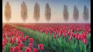 Most Beautiful Places In America 2014 HD 1080p
