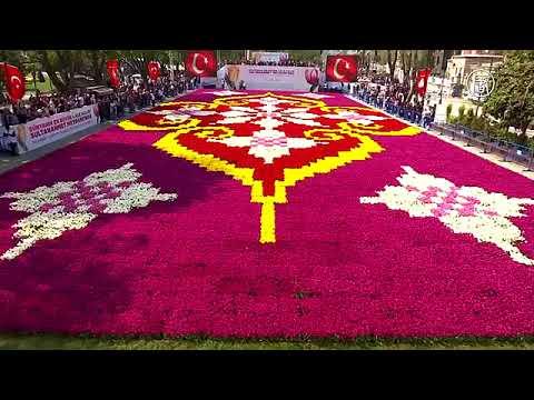 Deutsche Welle(Германия)| 16.04.2018: Гигантский ковёр из тюльпанов украсил Стамбул