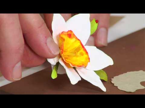 Designing in Susan's Garden with Sizzix Thinlits Narcissus Paperwhites Flower Set