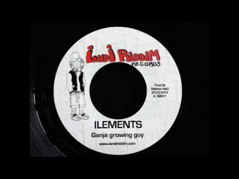 ILEMENTS - GANJA GROWING GUY (I And I Riddim Records)