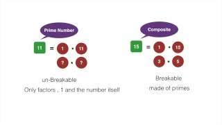 Introduction to factors and factorization.Intro to Prime and Composite numbers.