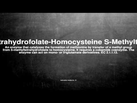 Medical vocabulary: What does 5-Methyltetrahydrofolate-Homocysteine S-Methyltransferase mean