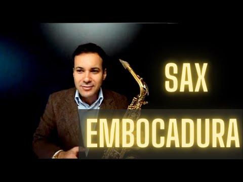 EMBOCADURA - www.landersax.com Qual a melhor posição da Boquilha em seus lábios.