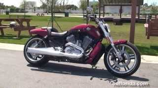 1. Used 2010 Harley Davidson V-Rod Muscle Motorcycles for sale - Spring Hill, FL