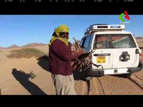 Reportage sur les coulisses du Bivouac à Djanet : Canal Algérie
